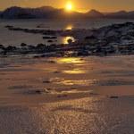 Arctic sunrise - vertical landscape - Svalbard — Stock Photo #24406695