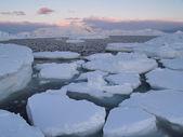 Last sun rays above the Arctic fjord - Svalbard landscape — Stock Photo