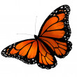 Butterfly — Stock Photo #13862045