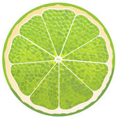 Cut lime — Stock Photo
