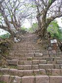Dph phou kamenné schody — Stock fotografie