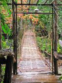 Hanging wooden bridge cross the river — Stock Photo