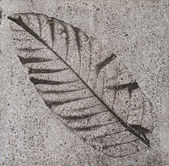 Azulejo de piso de cemento — Foto de Stock
