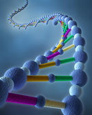Abstract DNA Chains — Stock Photo