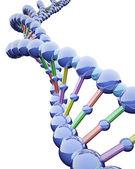Metallic DNA Chains — Stock Photo