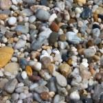 Small pebbles in beach — Stock Photo #15647079