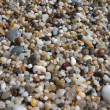 Small pebbles in beach — Stock Photo #15646781