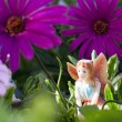 Fairy on vegetation — Stock Photo