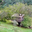 Tree house — Photo #15788831