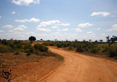 Landscape in Tsavo park — Stock Photo