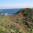 Pacific Ocean — Stock Photo #20950571