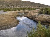 Bolivian altiplano — Stock Photo