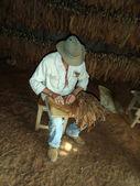 """Preparing a """"Puro Cubano"""", Pinar del Rio — Stock Photo"""