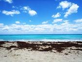 热带的海滩上放松 — 图库照片