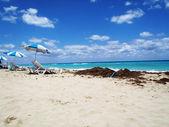熱帯のビーチでリラックス — ストック写真