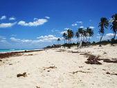 Relajarse en una playa tropical — Foto de Stock