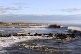 Wave on Tuscany coast — Stock Photo