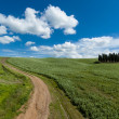 Landscape in Tuscany — Stock Photo