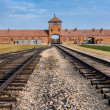 Auschwitz Museum - Stock Photo