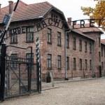 ������, ������: The Auschwitz Museum