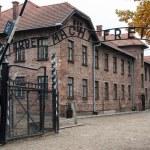 Постер, плакат: The Auschwitz Museum
