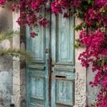 Old wooden door — Stock Photo #13857410
