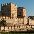 City walls of Istanbul — Stock Photo #13857471