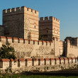 Stock Photo: City walls of Istanbul
