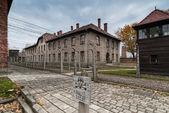 Auschwitz Müzesi — Stok fotoğraf