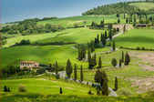 Landscape in Tuscany — Stockfoto