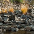Foto Stock: Mountain stream