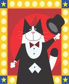 Magician Cat — Stock Photo