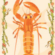 Lobster illustrative — Foto Stock