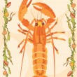 Lobster illustrative — Stok fotoğraf