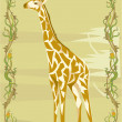 Giraffe illustrative — ストック写真