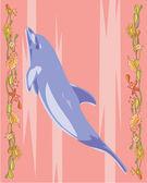 Delphin illustrativen — Stockfoto