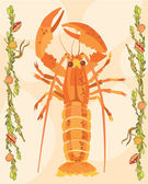 Lobster illustrative — 图库照片