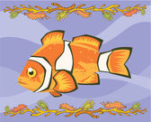 Nemo, clown fish illustrative — 图库照片