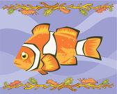 Nemo, palyaço balığı açıklayıcı — Stok fotoğraf
