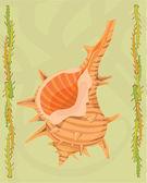 Kabuklu deniz ürünleri tasvir — Stok fotoğraf
