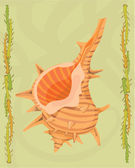 Shellfish illustrative — 图库照片