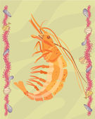 Shrimp illustrative — 图库照片