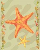 Estrela do mar ilustrativas — Foto Stock
