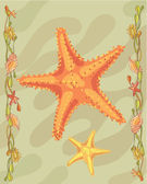 Starfish illustrative — Stok fotoğraf