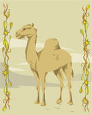 верблюд иллюстративный — Стоковое фото
