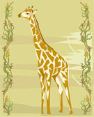Giraffe illustrative — 图库照片