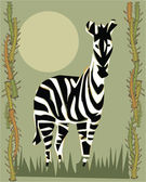 Zebra ilustrativo — Foto Stock