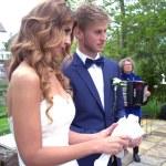 Garden wedding — Stock Photo #26063147