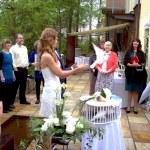 Garden wedding — Stock Photo