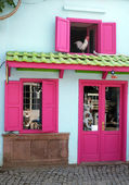 Little shop in vibrant colors — Stock Photo